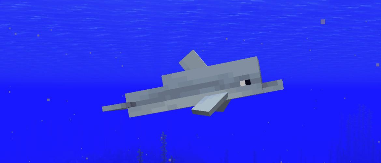 Дельфины в Minecraft